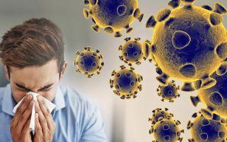 Вторая волна коронавируса в России осенью