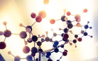 Стимулируем андростерон — как повысить гормон