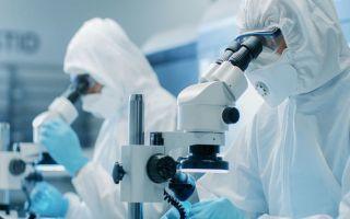 Состав вакцины от коронавируса «Спутник V» (Гам-КОВИД-Вак)