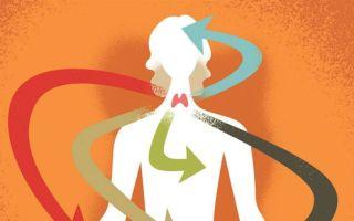 Высокий тиреотропный гормон — что это значит
