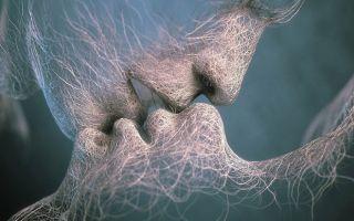 Андроген и эстроген — что это такое