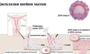 Влияние алкоголя на тестостерон — гормон роста и алкоголь