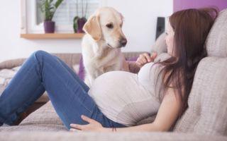 Повышенный тонус матки при беременности — что делать