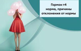 Свободный гормон тироксин — норма у женщин